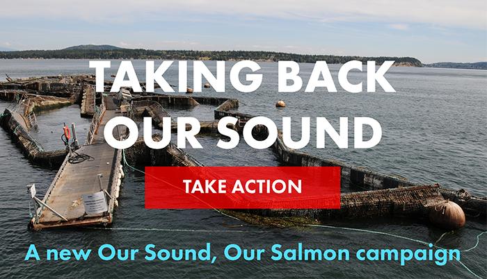 Taking Back Our Sound Slider