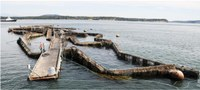 Conservation group submits lease proposal to take back public waters from the commercial open water net pen industry