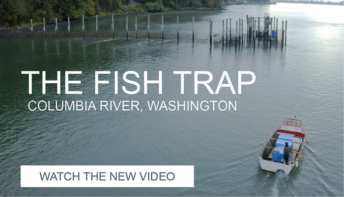 2020 Fish Trap Video_Slider_resized