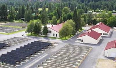 Leavenworth hatchery